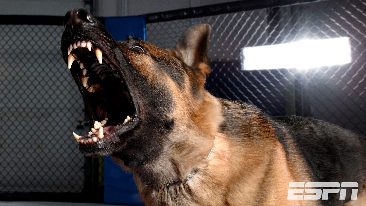 ESPN Execs: 'Fuck It, Luft-Das Dogfighting -'