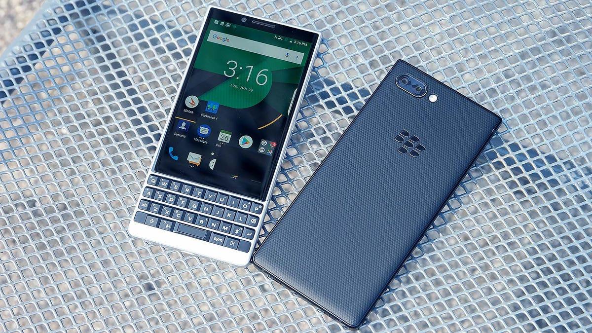 of blackberry