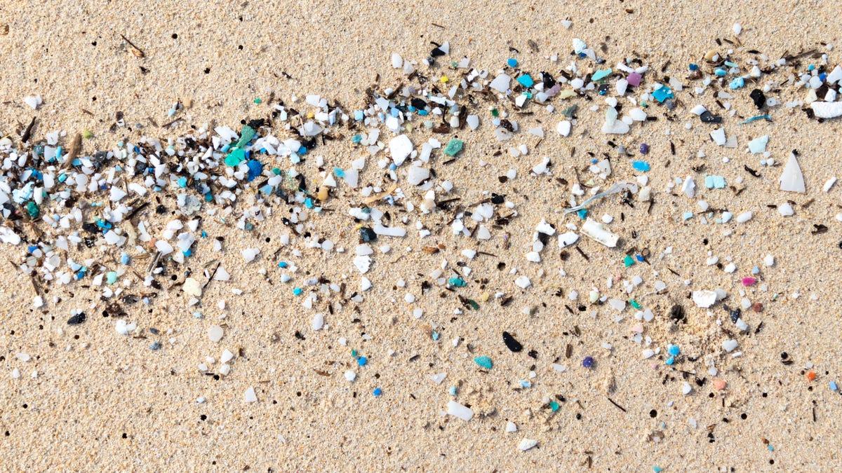 How to Avoid Ingesting Microplastics