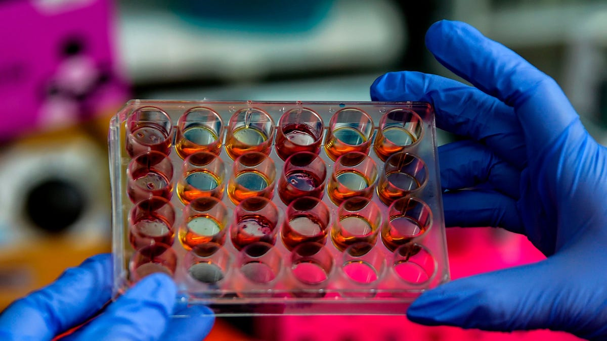 Scientists Raise Concerns Over Data Used in Two Major Covid-19 Studies