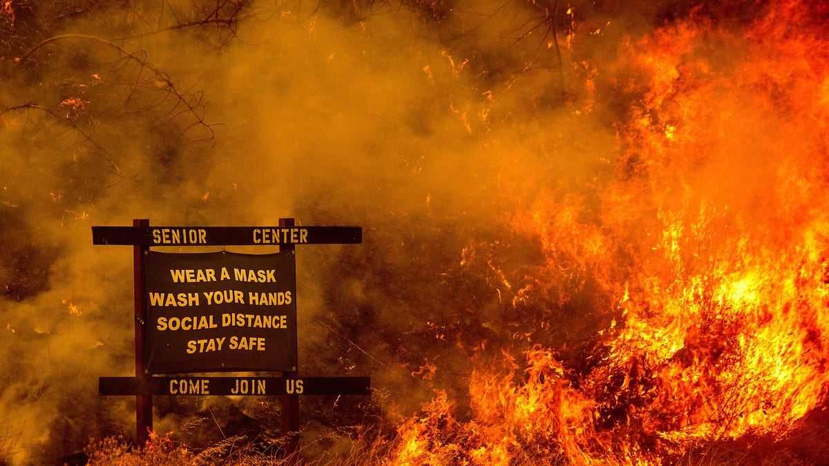 Murder Cover-Up: Man Allegedly Set Deadly Wildfire to Hide His Crime thumbnail
