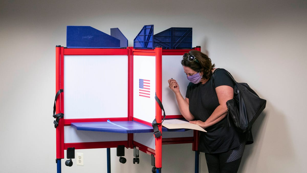 Cut Fiber Optic Cable Knocks Virginia Voter Registration System Offline Hours Before Deadline