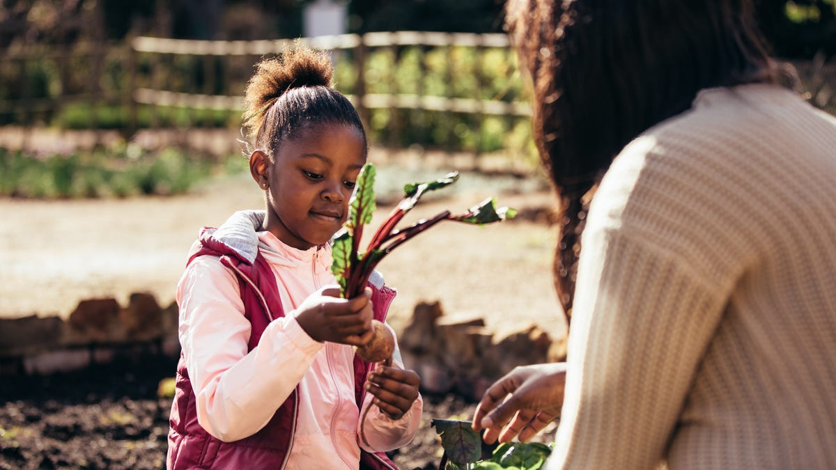 How to Introduce Your Kids to Vegan and Plant-Based Diets