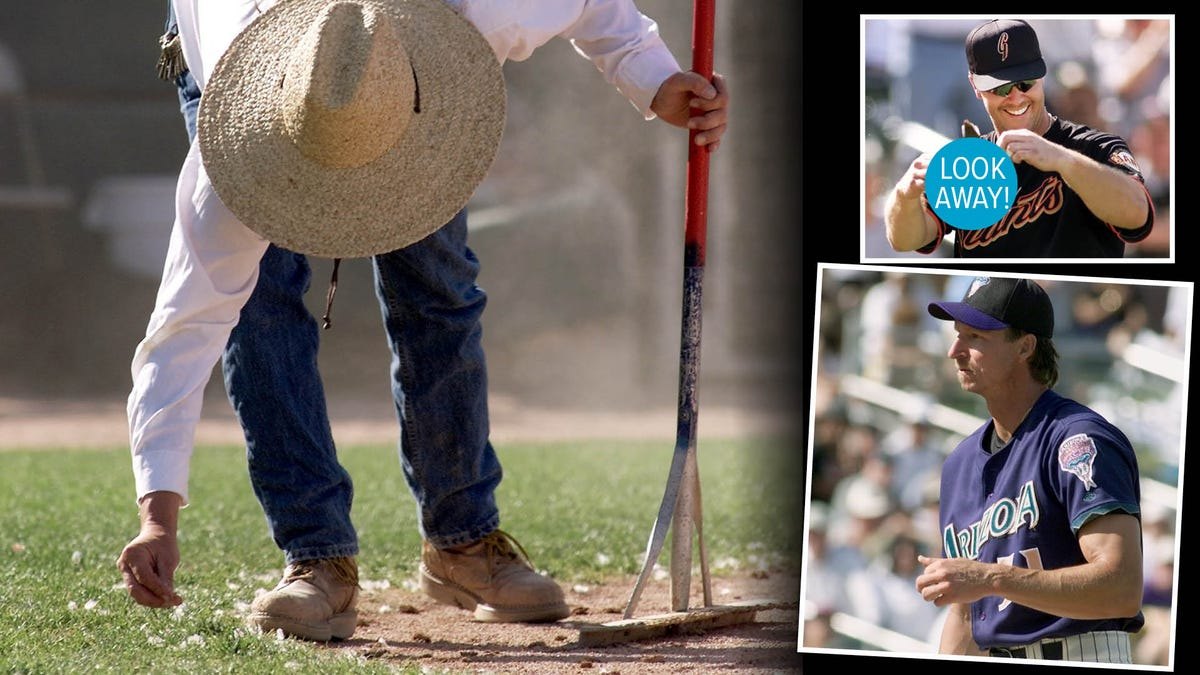 20 years ago, we lost a bird to Randy Johnson's cannon