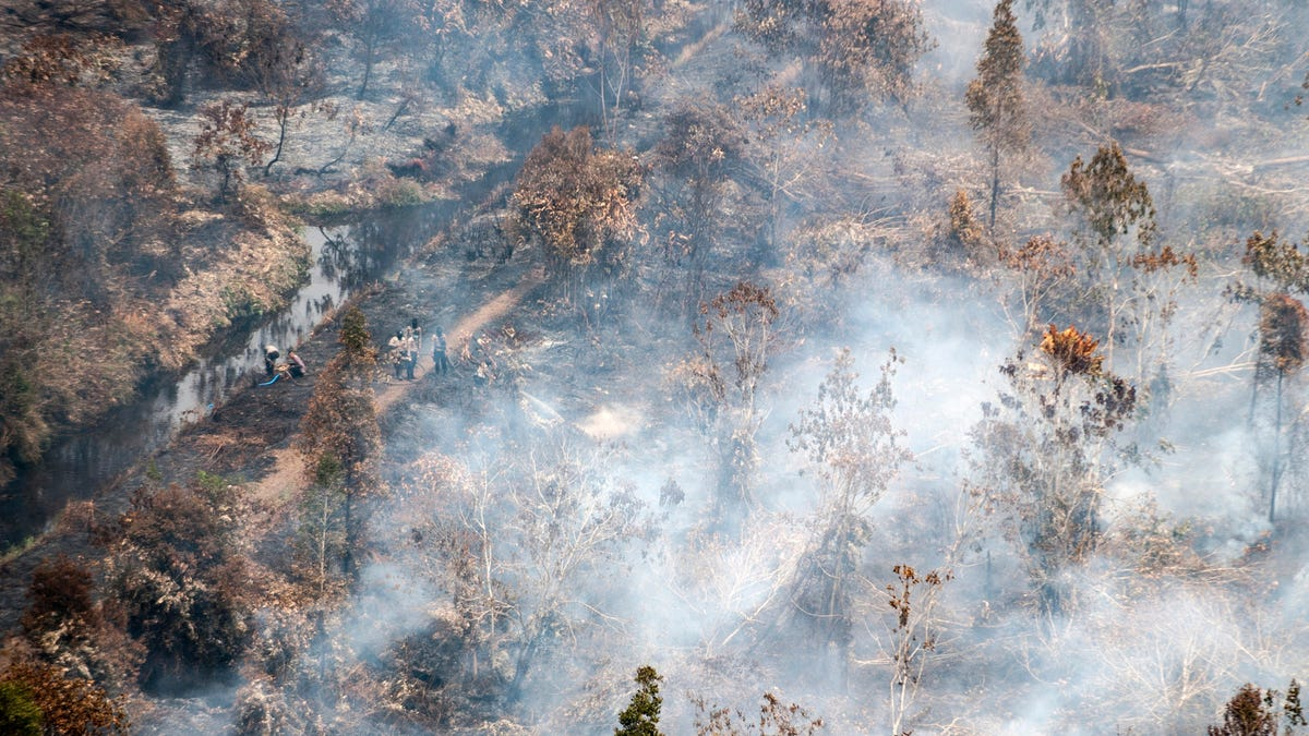 Forest Fires Are Turning Indonesia Into Mars