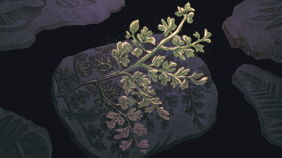 Forget the Woolly Mammoth—Let's Resurrect Some Extinct Plants
