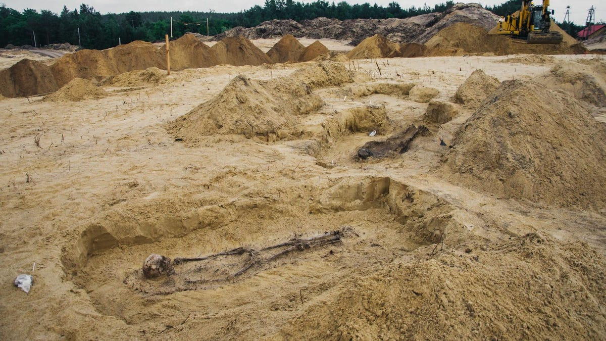 16th-Century Child Skeletons With Coins in Their Mouths Found at Construction Site in Poland