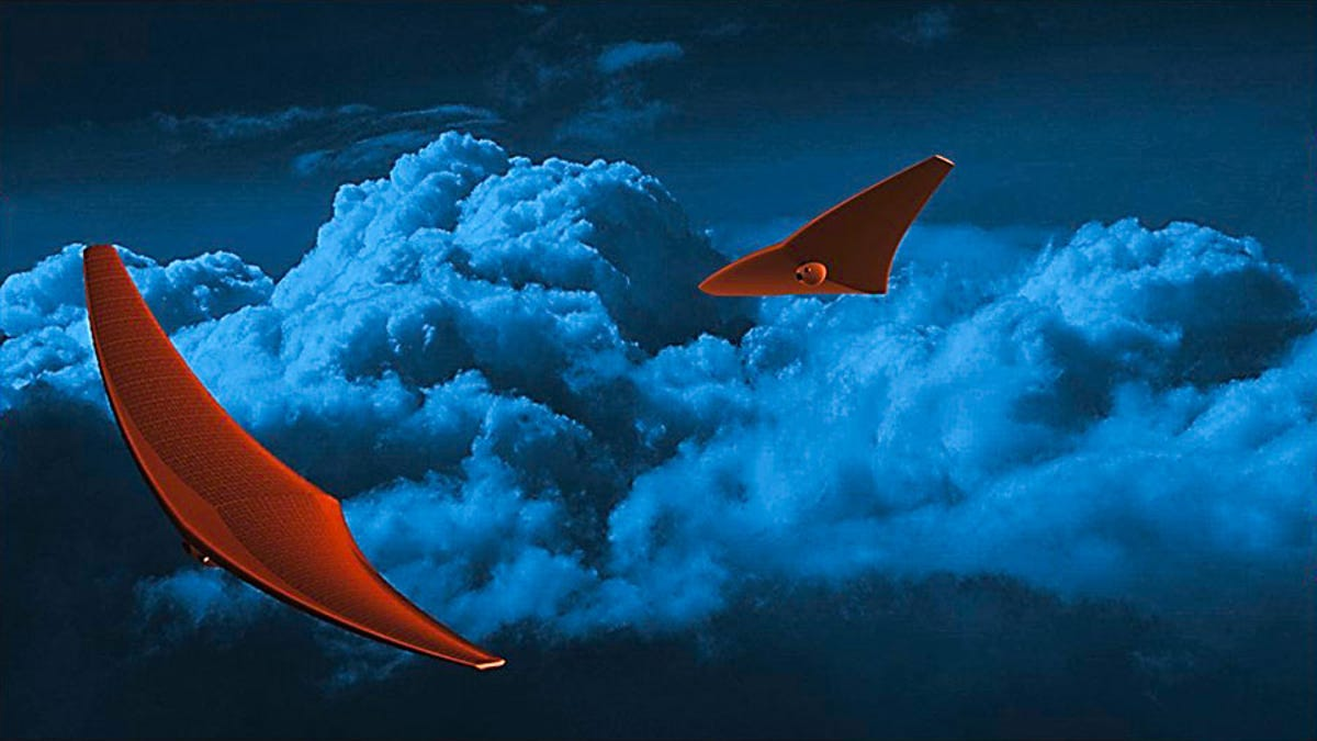 Stingray-Shaped Probes Could Explore Venus's Atmosphere