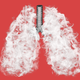 Illustration for article titled What Ever Happened to the Vaping Lung Disease?