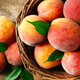 Illustration for article titled Now Throw Out Your Peaches, FDA Says