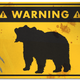 Illustration for article titled How to Survive a Bear Attack