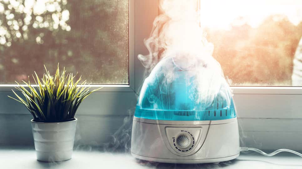 How to Clean and Sanitize Your Humidifier, Because It''s Probably Gross in There