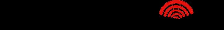 PatriotHole logo