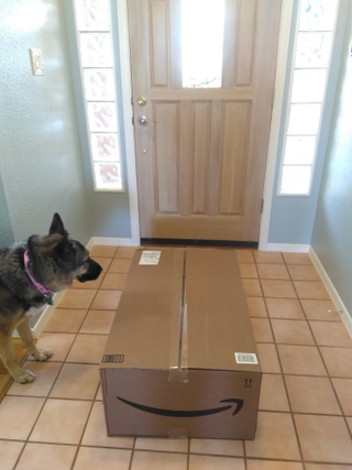 At about 10AM this morning USPS brought me a larger than average Amazon erection.