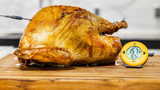 Cook The Perfect Turkey With a Discounted ThermoWorks DOT