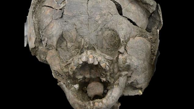 Infant Skeletons Wearing 'Helmets' Made of Other Children's Skulls Stun Archaeologists