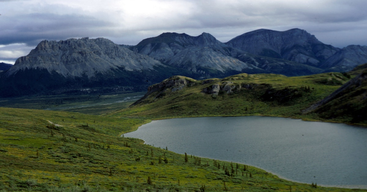 How Soon Can Oil And Gas Operations Begin In The Arctic National Wildlife Refuge?