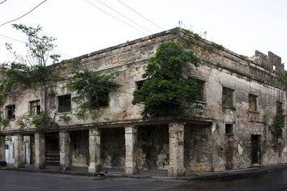 Abandoned Buildings In Tampico, Mexico Are Filled With Trees