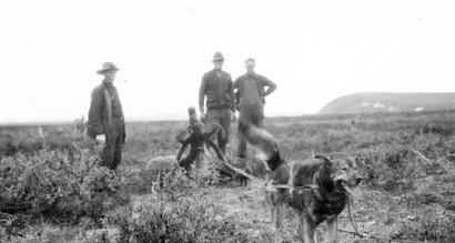 These Dogs are Honorary Geologists for Their Early Exploration of Alaska