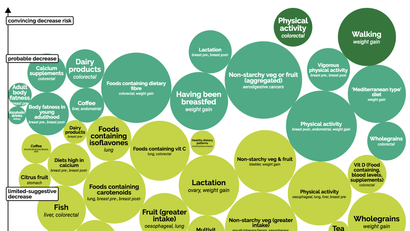 This Graphic Shows What Really Matters In Preventing Cancer