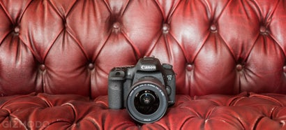 Canon 7D Mark II: The Best DSLR For Sports and Wildlife, But That's All