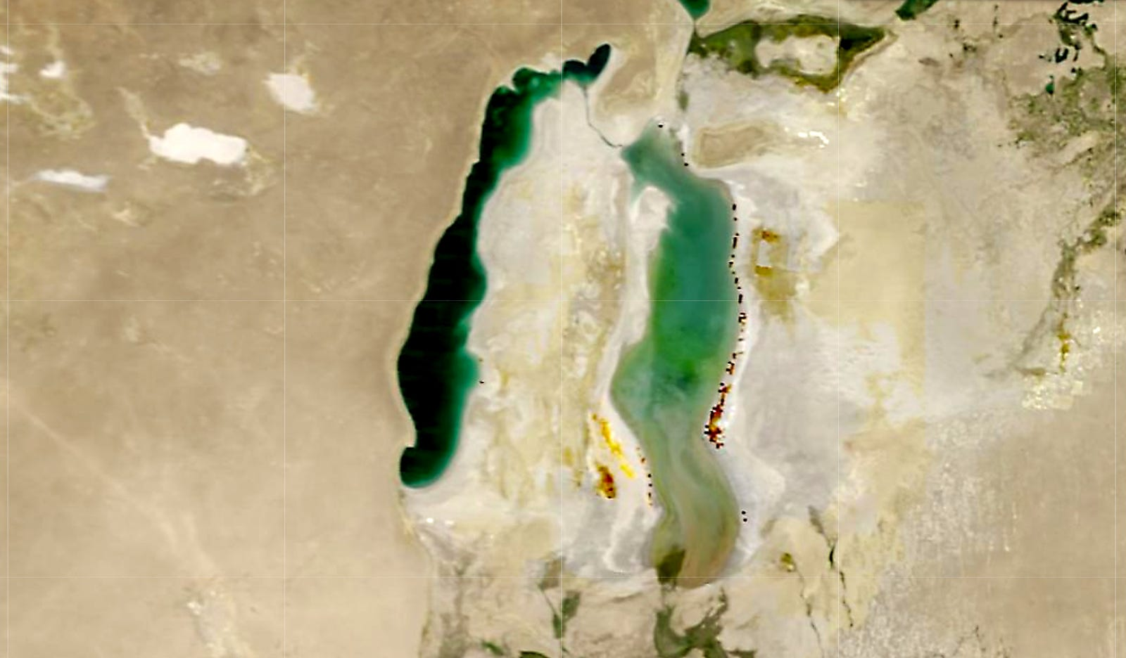 Landsat imagery shows the Aral Sea in July 2010 with water in its eastern lobe.