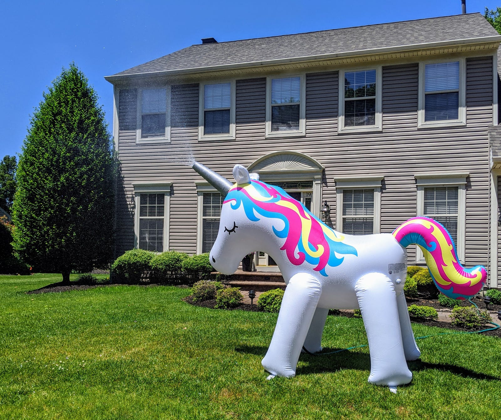 """""""Caught this unicorn watering a lawn.Pixel 3"""""""