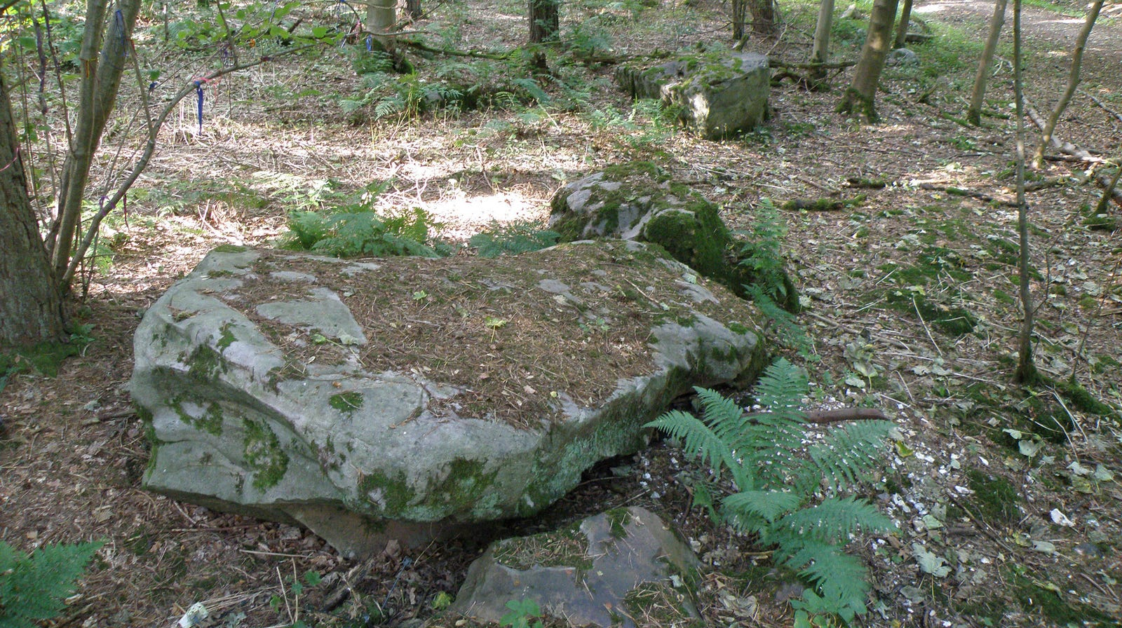 A large sarsen stone at West Woods.