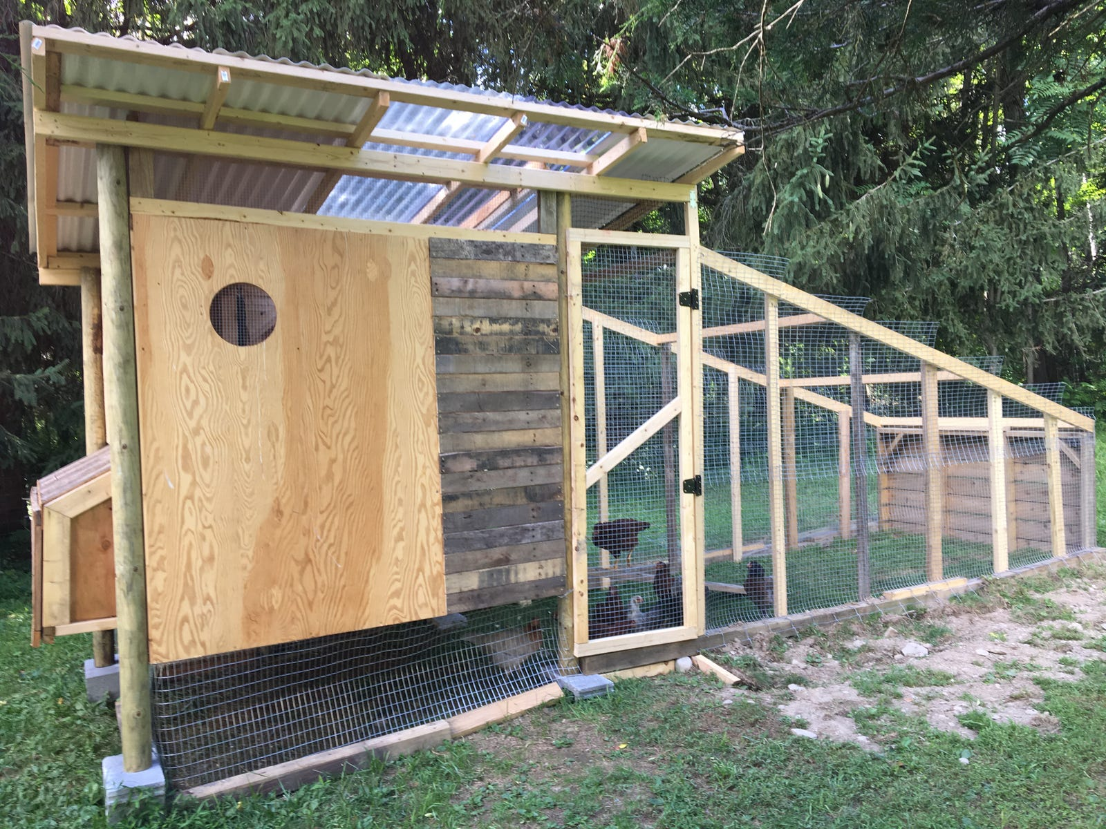 My nearly-completed coop, which I made mostly from scrap wood plus around $200 in lumber and other building materials.