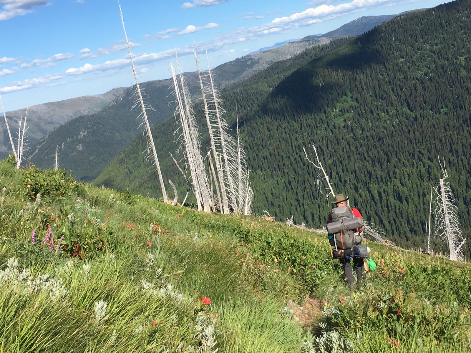 On my backpacking trip, a steep descent from Chilcoot Pass after 10 miles of uphill slog - Lolo National Forest, Montana