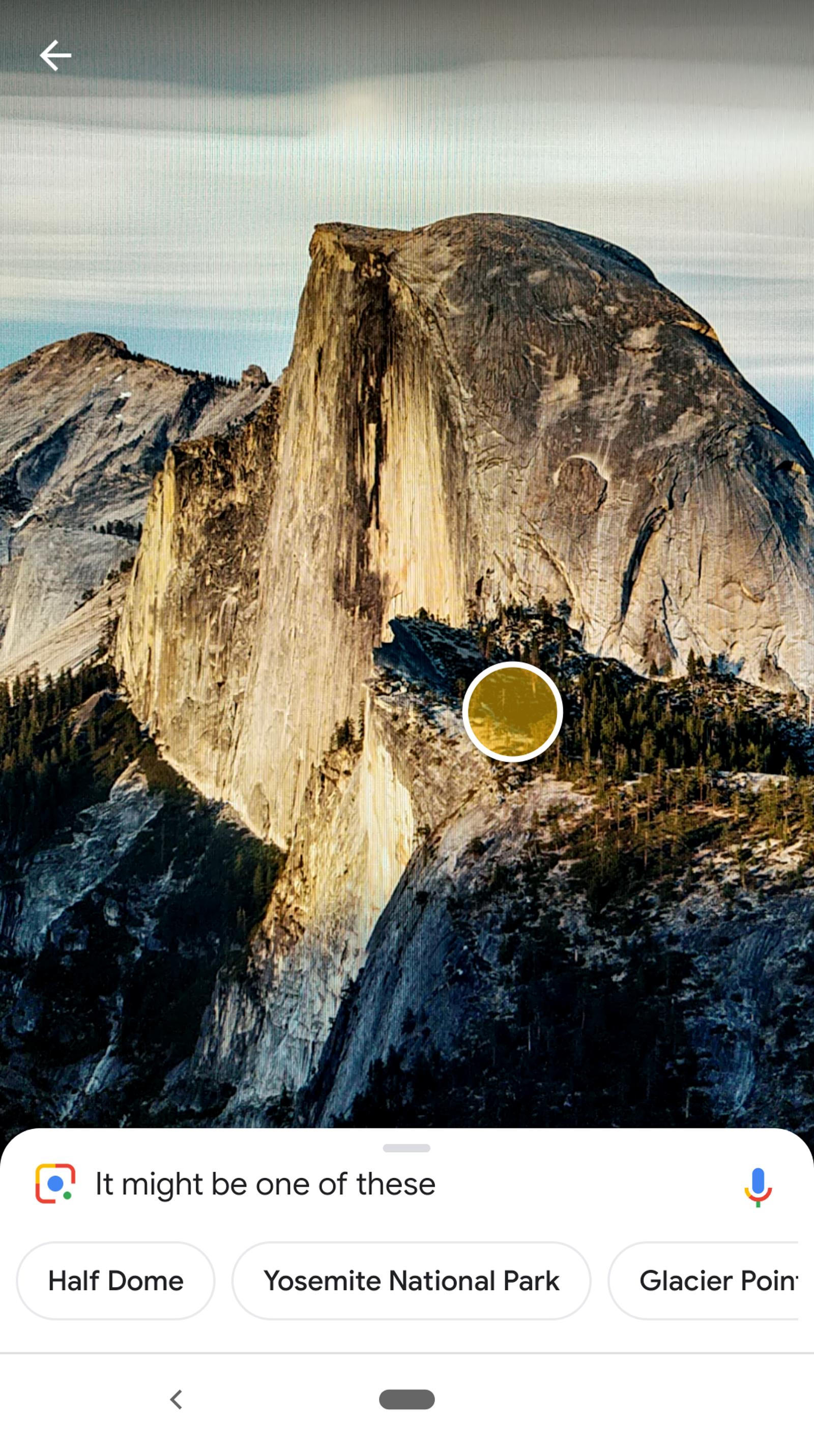 Easy-peasy, Google Lens.
