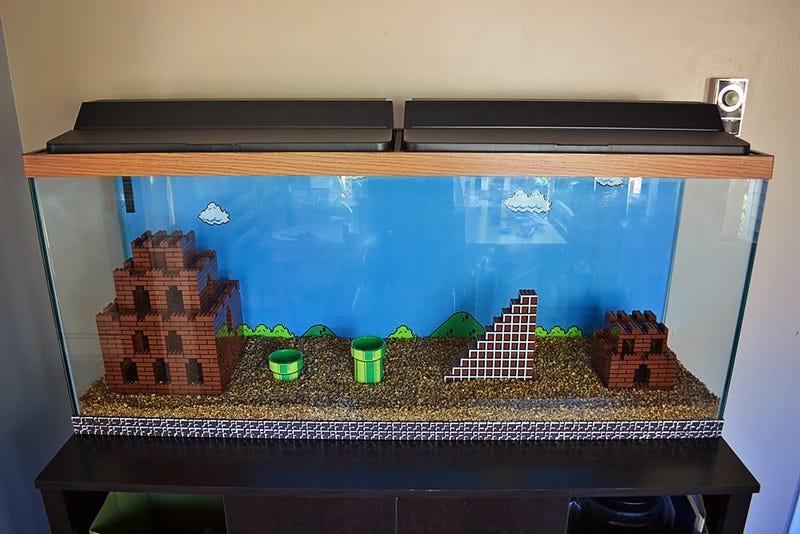 Super Mario Bros Aquarium Get Built