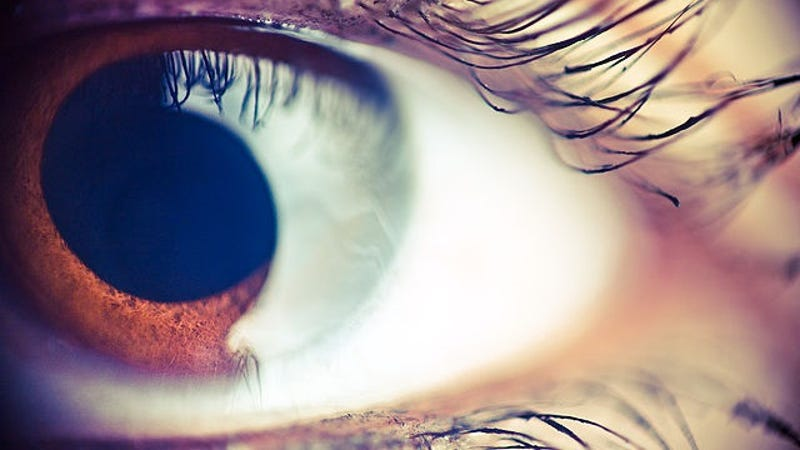 You Can See Your Own White Blood Cells Flowing Through Your Eye!