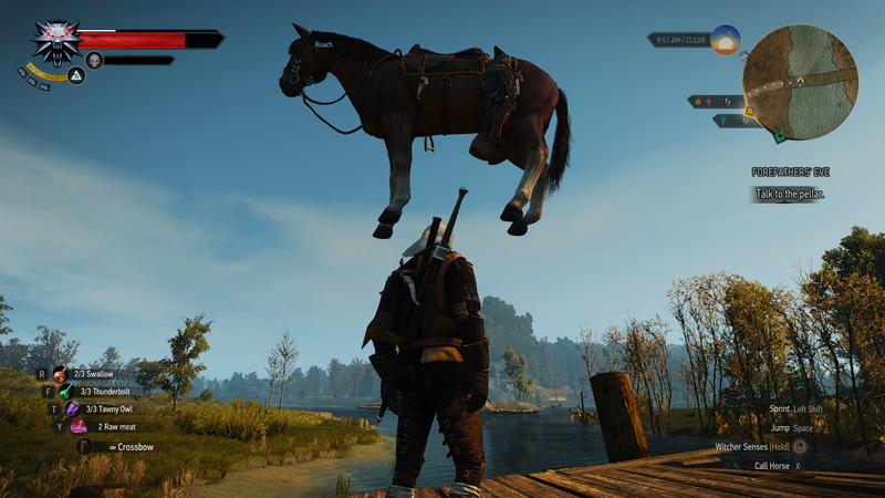 Glitchy Roach Card Is Too Good Not To Leave In The Witcher 3's ...