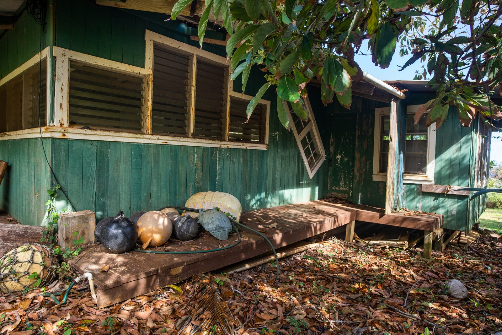The home Carlos Andrade built out of recycled materials.