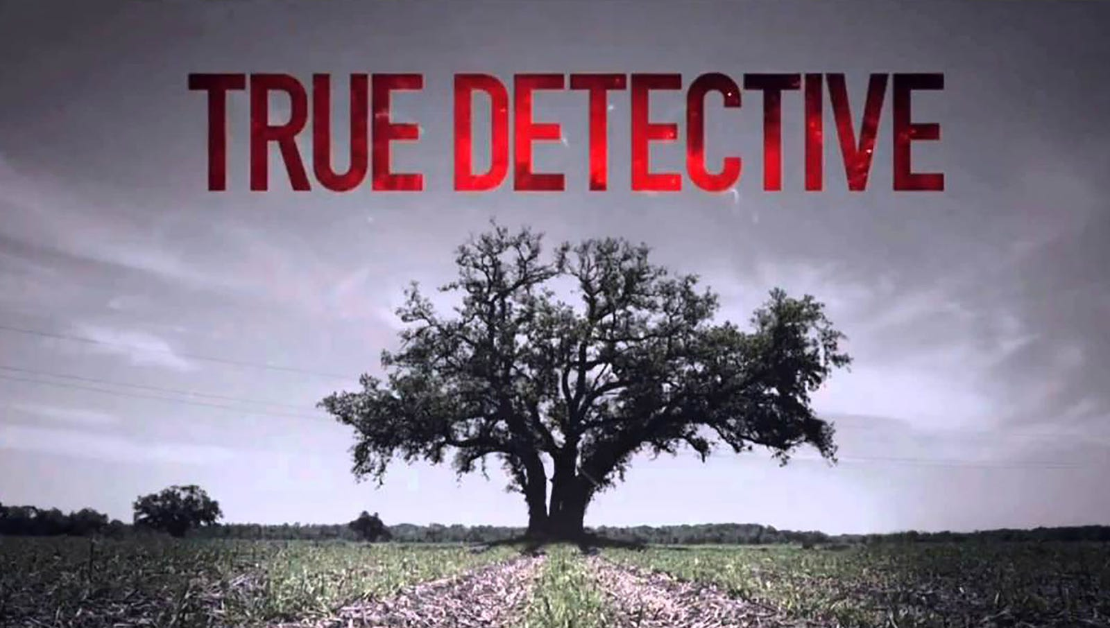 True Detective  HBO's runaway hit of the year wowed critics and audiences alike with its rich portrayal of man's basest and darkest desires to watch TV and talk about it endlessly.