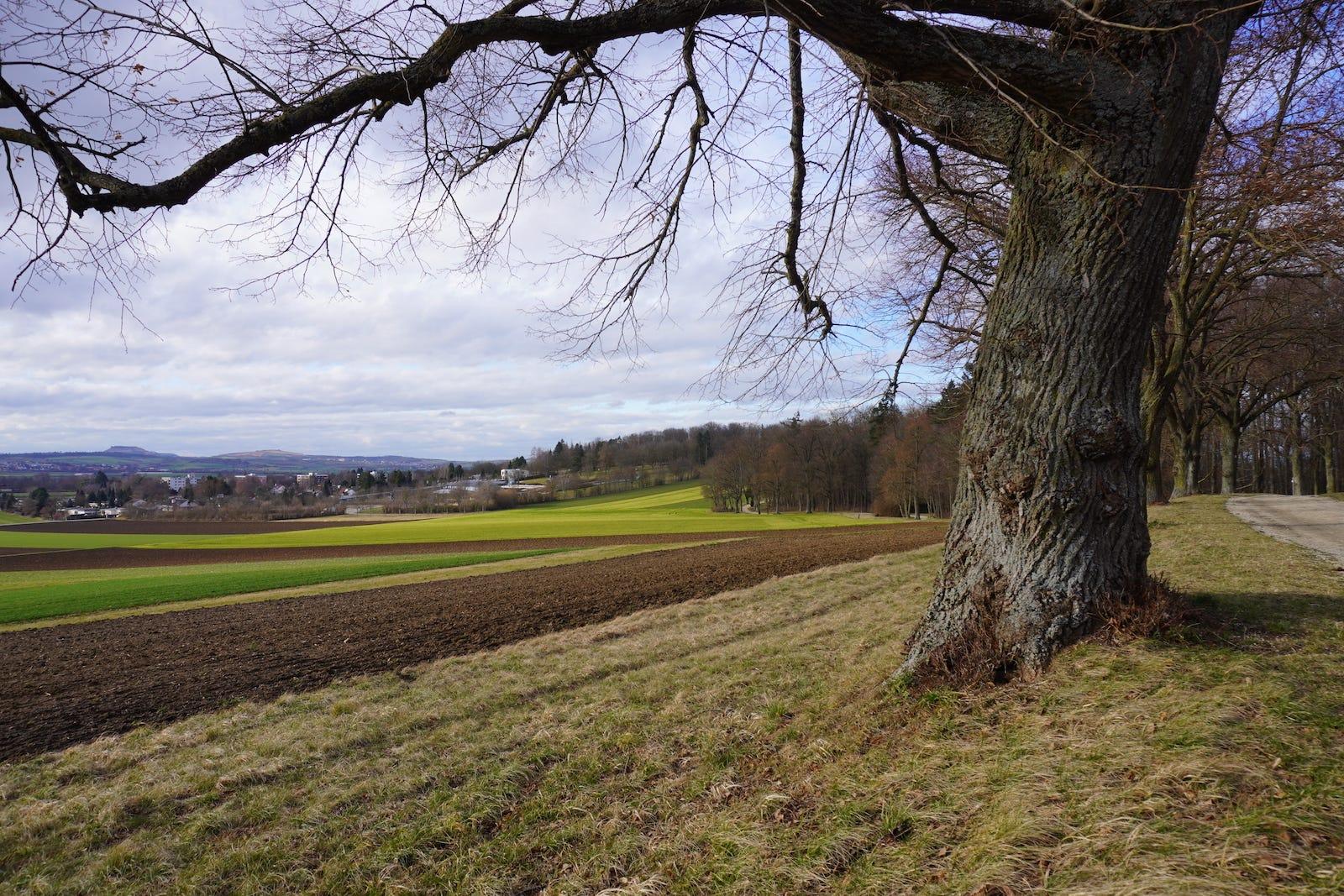Tipico paisaje de Bayern, en Alemania, por si teníais curiosidad.