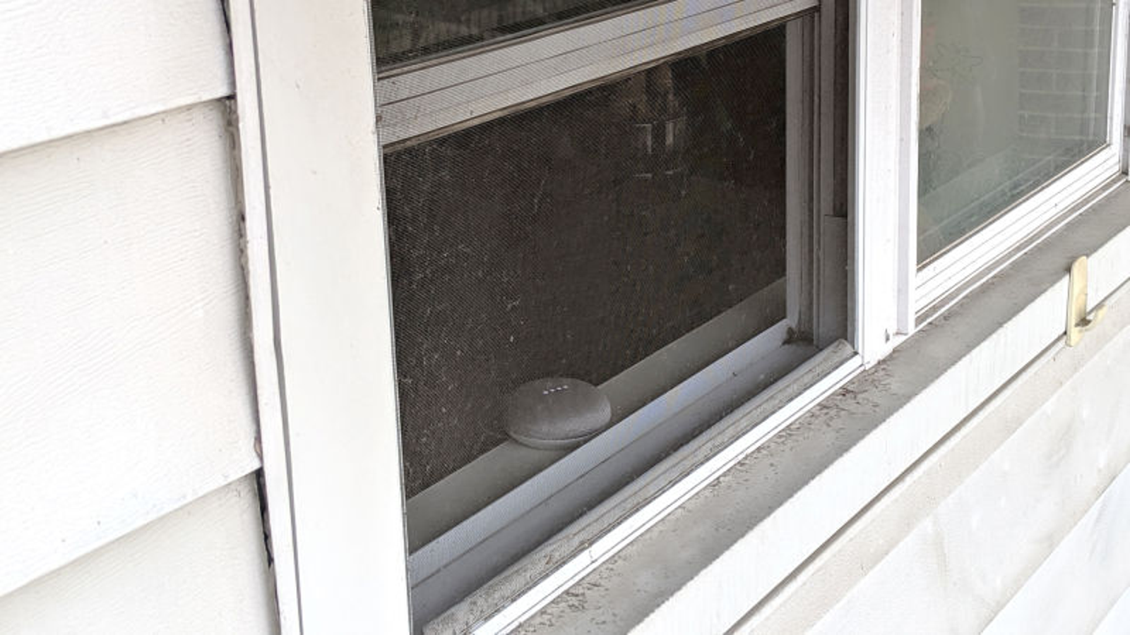 Neglected Google Home Sits By Window Barking At Passersby