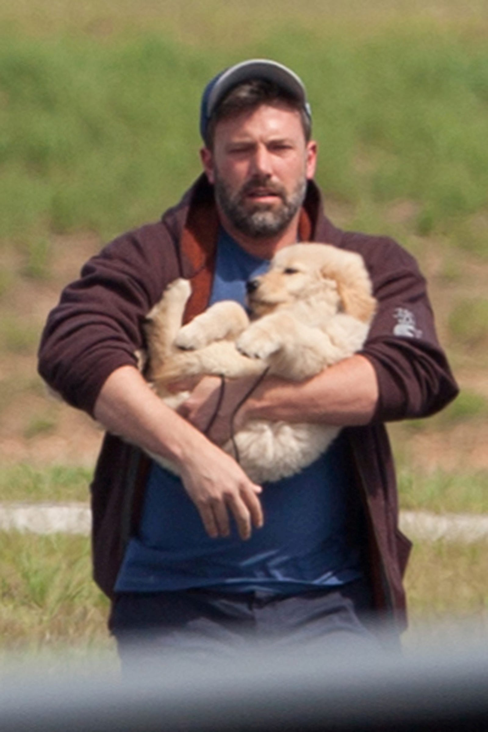 Ben Affleck is holding this dog like it's a pile of dirty laundry. Image: Backgrid