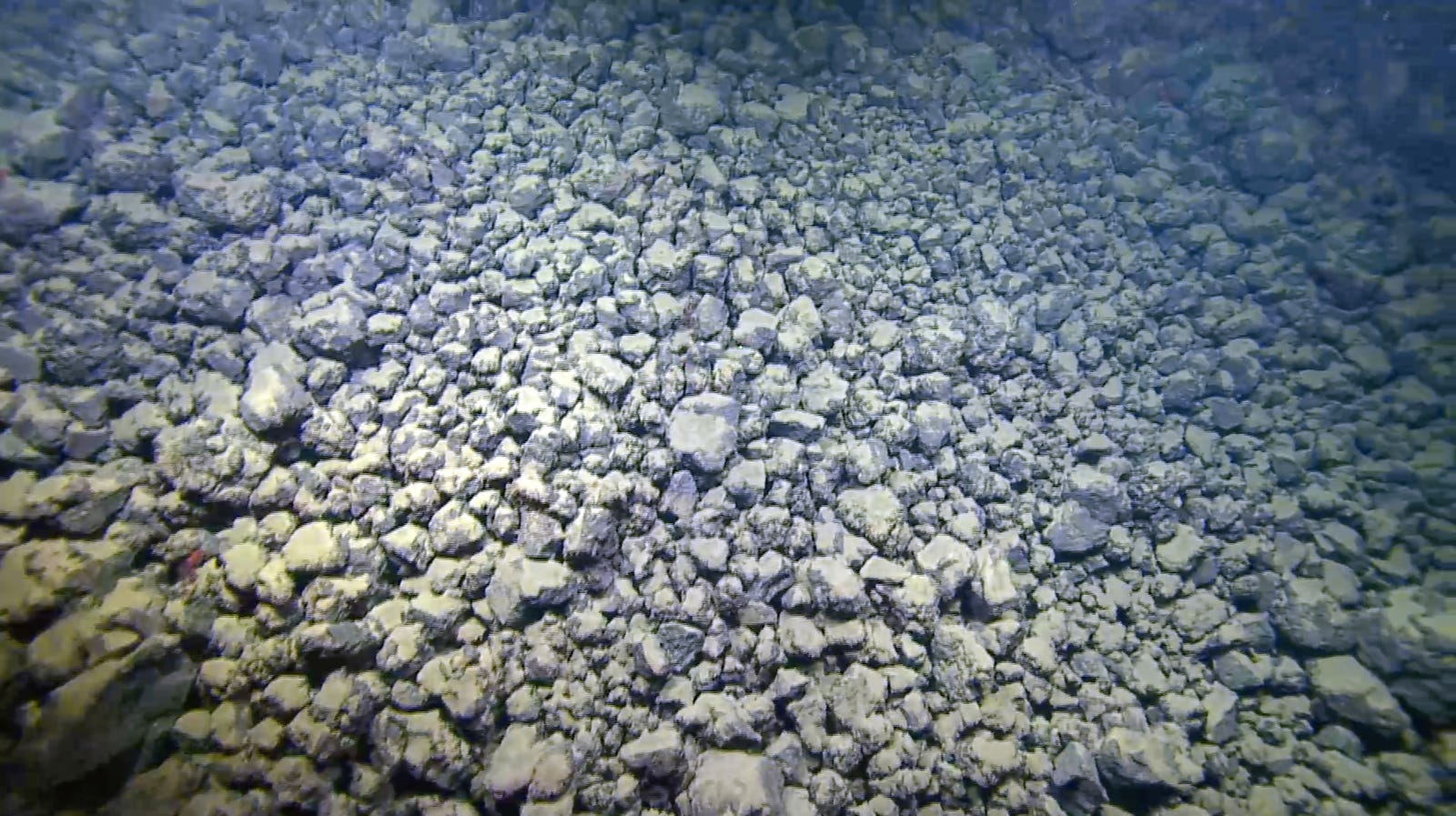 Broken lava fragments, such as those shown here, comprise the majority of Kilauea's undersea lava delta.
