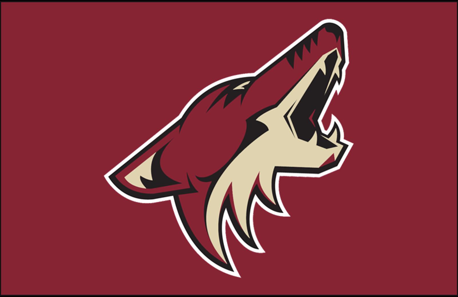 41. Arizona Coyotes