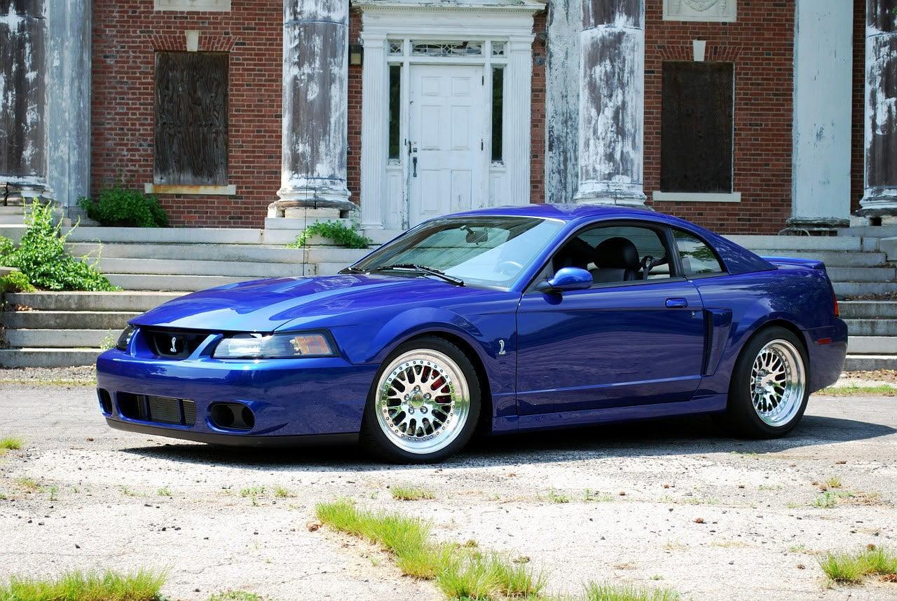 Terminator Mustang Whine