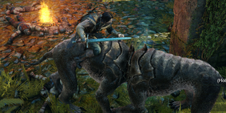 Illustration for article titled Glitches Make Shadow Of Mordor's Orc Hunting Way Funnier