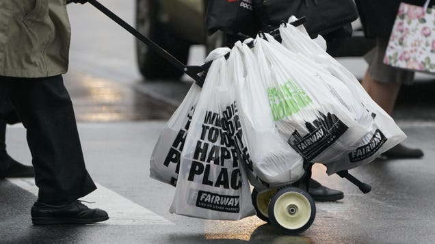 Here s What You Need to Know About New York s Plastic Bag Ban Kicking Off in March