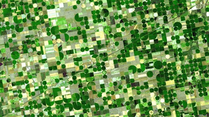 Cultivos en Kansas vistos desde el espacio. Imagen: NASA/GSFC/METI/ERSDAC/JAROS, y U.S./Japan ASTER Science Team