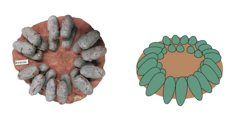 Image: Wiemann et al