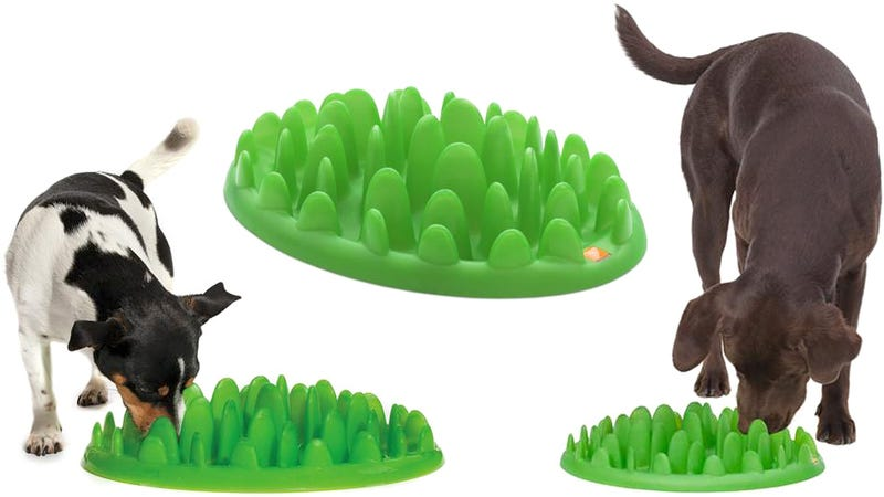 Illustration for article titled Spiked Bowl Stops Your Dog From Eating Like an Animal