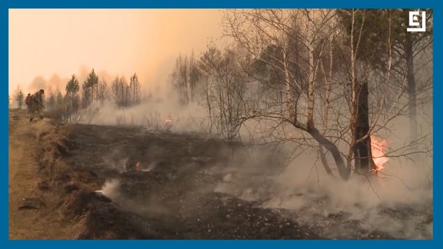Siberian Wildfires Have Burned an Area More Than Three Times the Size of Delaware