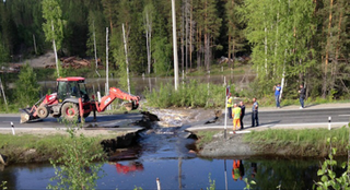 Illustration for article titled Beaver Dam Causes Russian Road to Collapse