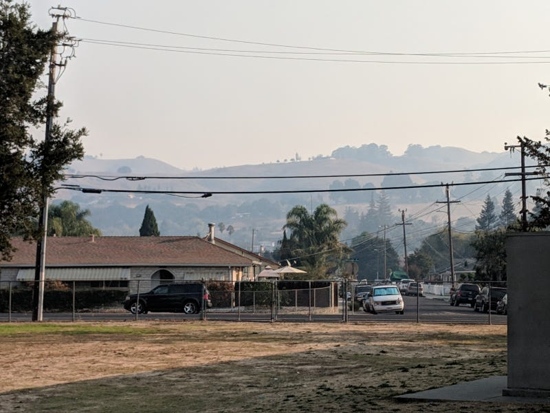 Illustration for article titled Smokey in South Hayward